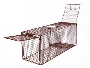 36D - Classic Deluxe Animal Trap