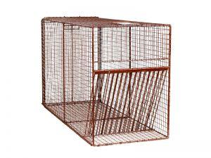 42RD - Bird Trap