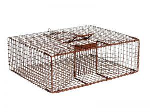 B26D - Bird Trap