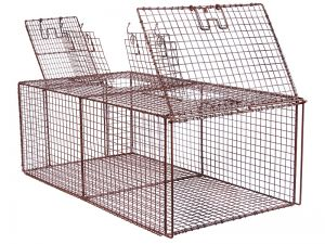 Feral Cat Recovery Cage (FCRC)