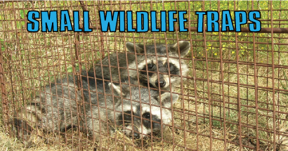 Small Wildlife Traps